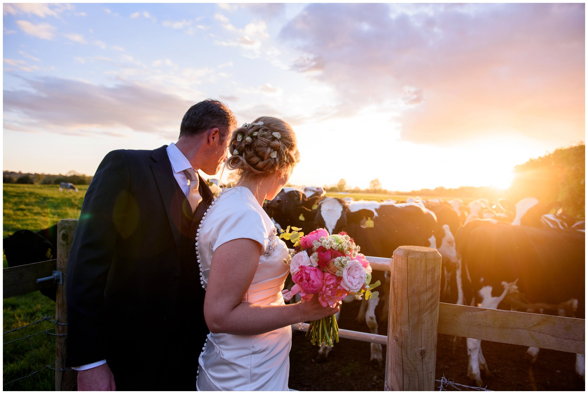 deans court wimborne wedding sunset with field of cows